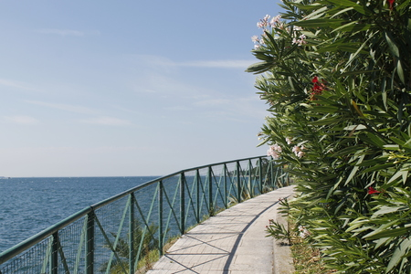 Walkway with colorful flowers on Garda lake in Italy.