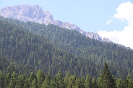 View of famous Dolomites mountain peaks in summer, The Dolomites of Brenta group, Italy