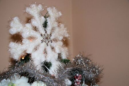 Christmas decorations on Christmas tree with white decorations