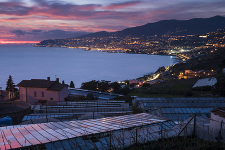 City of Sanremo on the Ligurian coast (Italy, Mediterranean Sea) with greenhouses for the cultivation of flowers, for which it is known in the world. Night view.