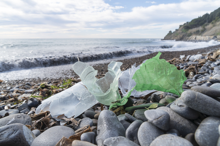 Marine pollution: plastic waste on the beach.