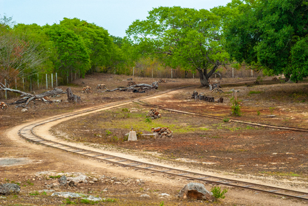 Sorting area with rails, taken in a plantation of Agave, in Tecoh, in the Yucatan peninsula