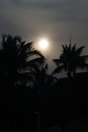 Photo in low light of a sunset between palm trees, taken in Tulum, in the Mexican peninsula of Yucatan
