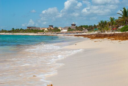 Tulum beach, with algae moored on the sand, taken in the Mexican Yucatan peninsula