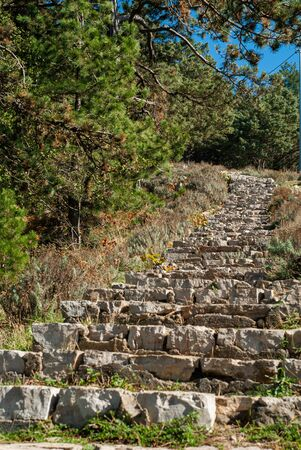 Stone staircase which rises towards the forest of Mount Faito Stok Fotoğraf