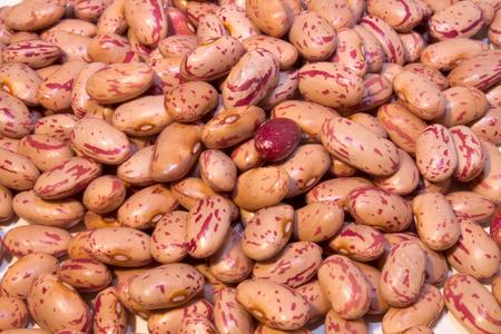 roman beans: Roman beans