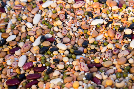 roman beans: mixture of various raw legumes and spelt