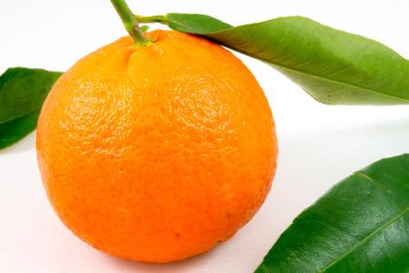 Closeup of a  sweet tangerine on white photo