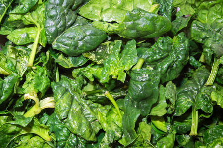 close up of fresh and clean spinach