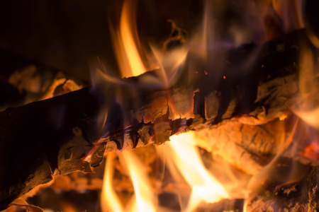 closeup of burning wood in a fireplace photo