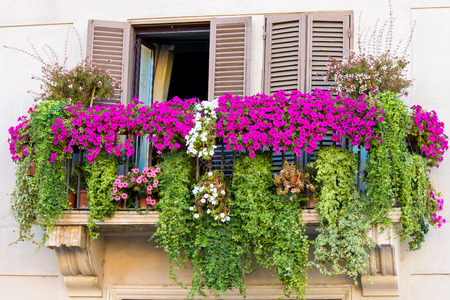 a Flowery balcony in a city street 写真素材