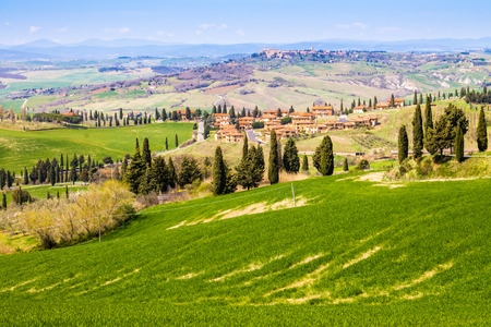pienza: Tuscan landscape, view of the green Val DOrcia Monticchiello and Pienza town in the background, in Italy