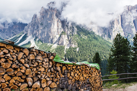 deforested: pile of tree trunks in the mountain