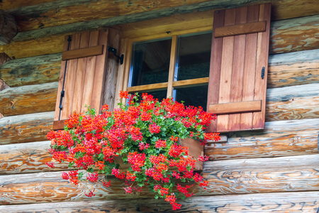 refuge: beautiful window with red flowers on the ledge of a wooden house