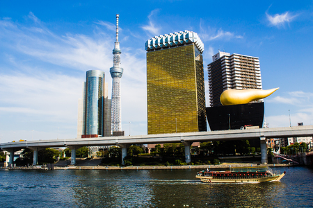 sumida ward: the Skyline of the Sumida Ward in Tokyo, with the skytree tower. Japan
