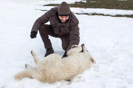 amigos abrazandose: Hombre que juega con un perro pastor de Maremma en la nieve
