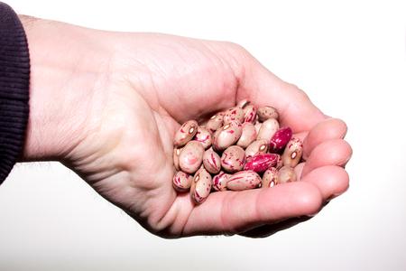 borlotti beans: a handful of  Borlotti beans, also known as Roman Beans, isolated on white