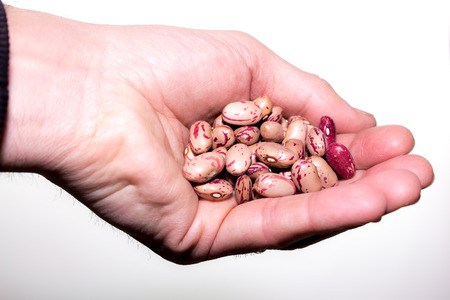 roman beans: a handful of  Borlotti beans, also known as Roman Beans, isolated on white