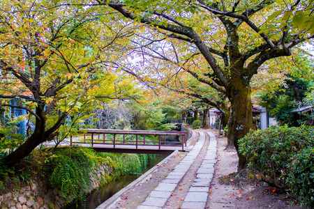 philosopher's: The Philosophers Walk,  a famous pedestrian path in Kyoto, Japan