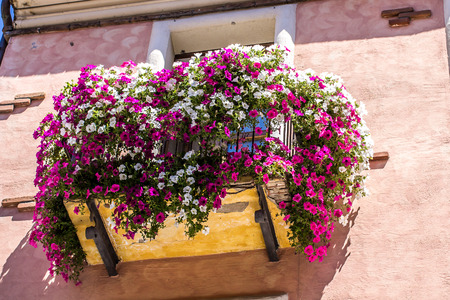 balcony: flowered balcony with violet and white flowers Stock Photo