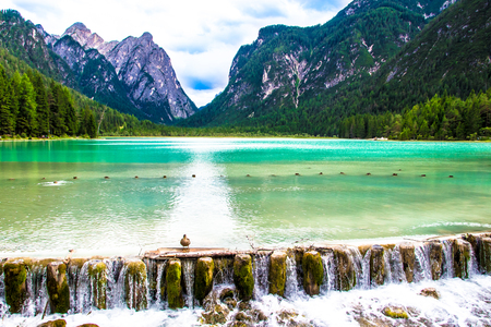Toblacher See, (Italian: Lago di Dobbiaco)  a lake in South Tyrol, Italy. Stock Photo