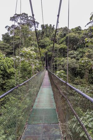 Sarapiqui adventure suspension Bridge Canopy Tours in the rain forest, Costa Rica Stok Fotoğraf