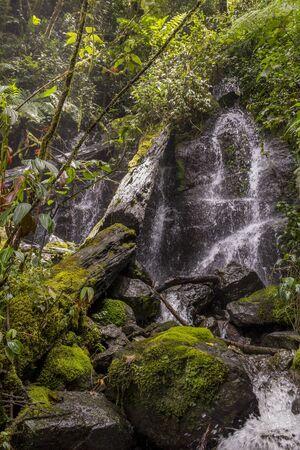 Savegre River Waterfall, Los quetzales national park San Gerardo de Dota, Costa Rica