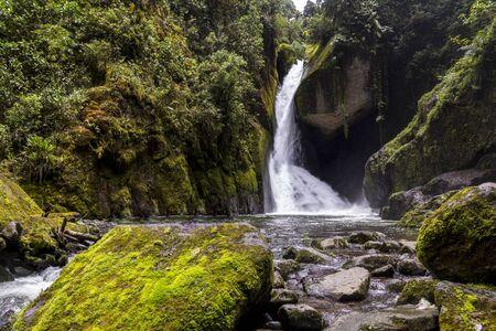 Savegre River Wasserfall, Nationalpark Los Quetzales San Gerardo de Dota, Costa Rica Standard-Bild