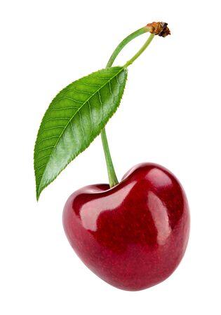 Kirsche auf weißem Hintergrund. Standard-Bild