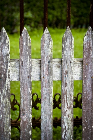 wooden fence on green background