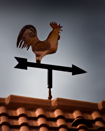 rooster weathervane on an orange roof photo