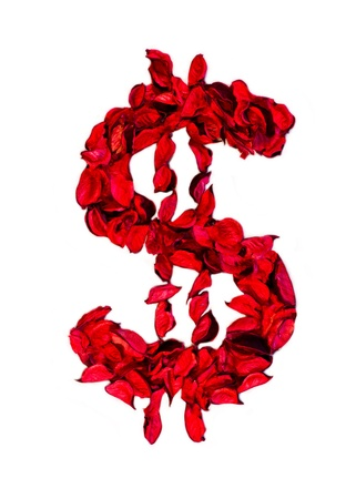 dolar sign made with flower petals photo