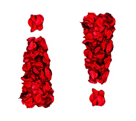 exclamation sign made with flower petals Stock Photo - 16726491
