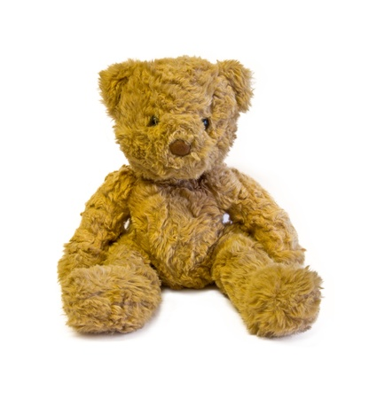 Cuddly teddy bear images - commercial oribe peralta y marco fabian images