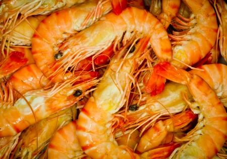 group of big cooked prawns Stock Photo - 17625787