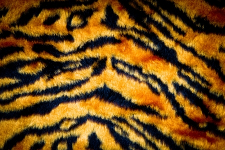 tiger leather texture with black and yellow colors photo