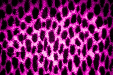 leopard leather texture with black and pink colors