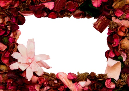 framework made with flower petals photo
