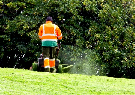 lawn mowing: man mowing the grass in a park Stock Photo