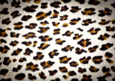 leopard skin texture background Stock Photo - 19426436