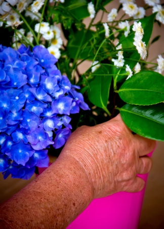 hands of an elderly woman making a bouquet of flowers photo