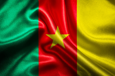 cameroonian: Cameroonian flag fabric with waves