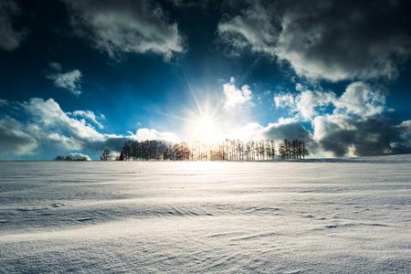 hokkaido: Hokkaido Biei Twilight Stock Photo