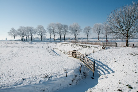 winter in holland photo
