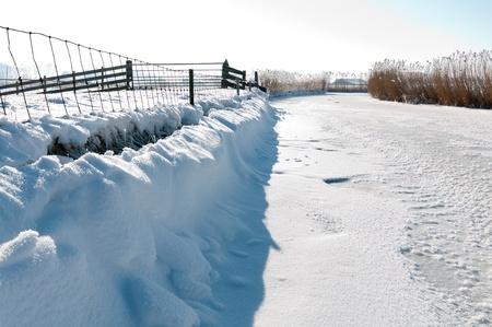 frozen canal in dutch polder