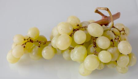 grapevine: grapevine on white background