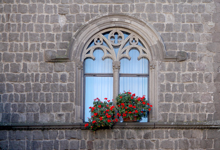 viterbo: old gothic window and flowers in Viterbo Italy