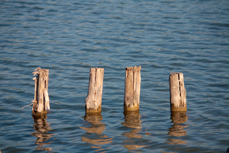 wooden stick: Old pier poles Stock Photo