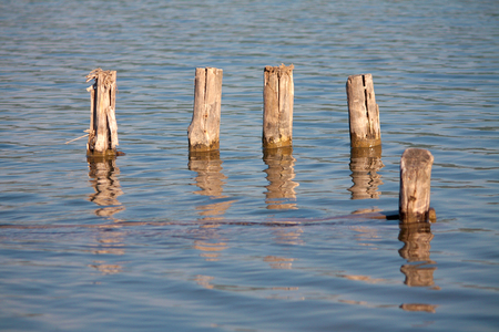 old pier: Old pier poles Stock Photo