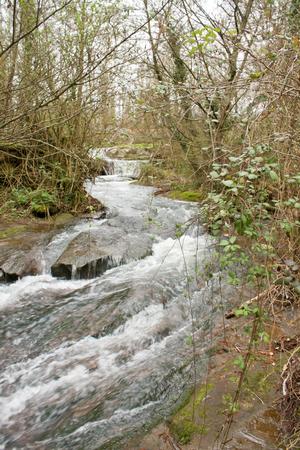 monte: Monte Gelato river in winter